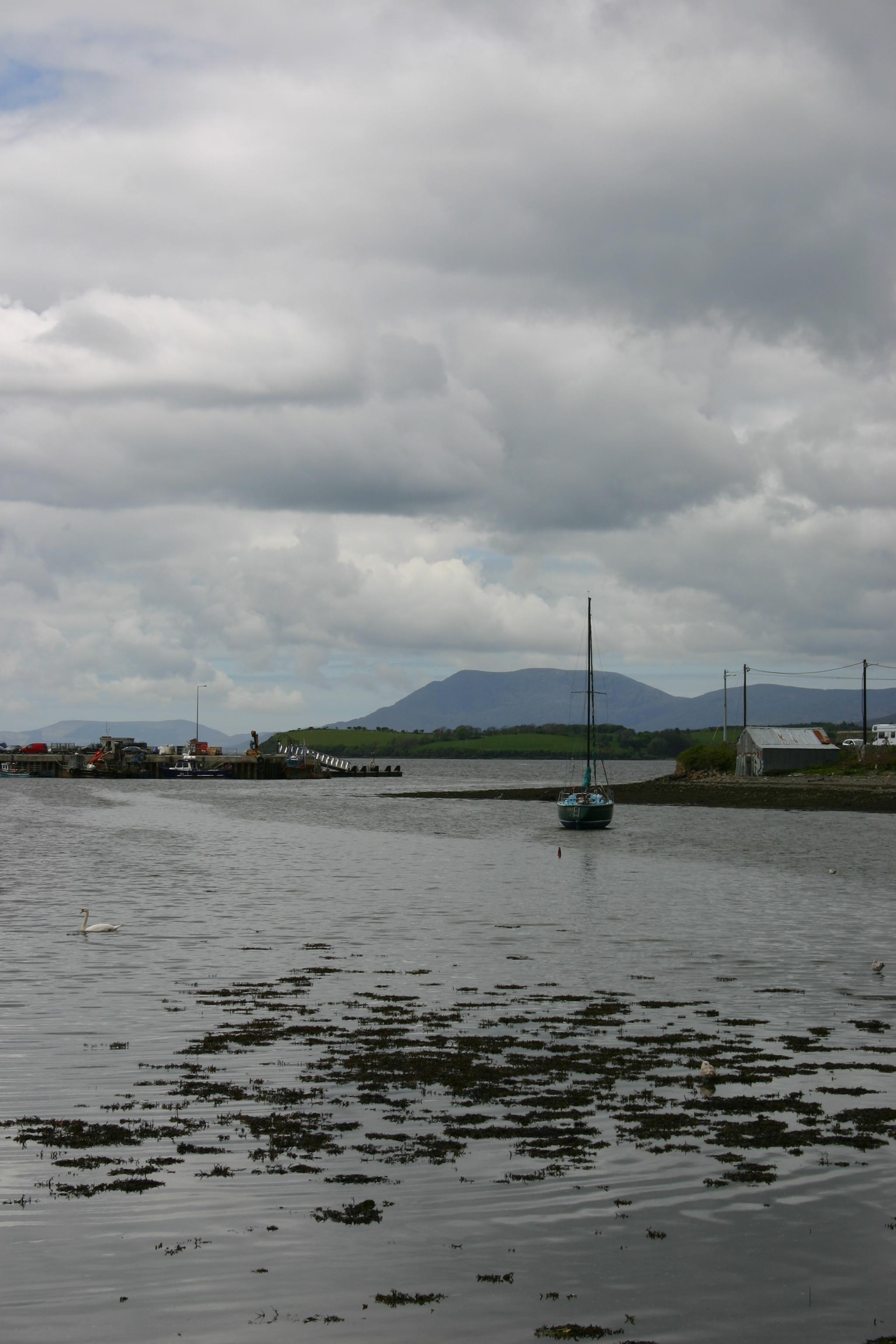 bantry harbour.jpg