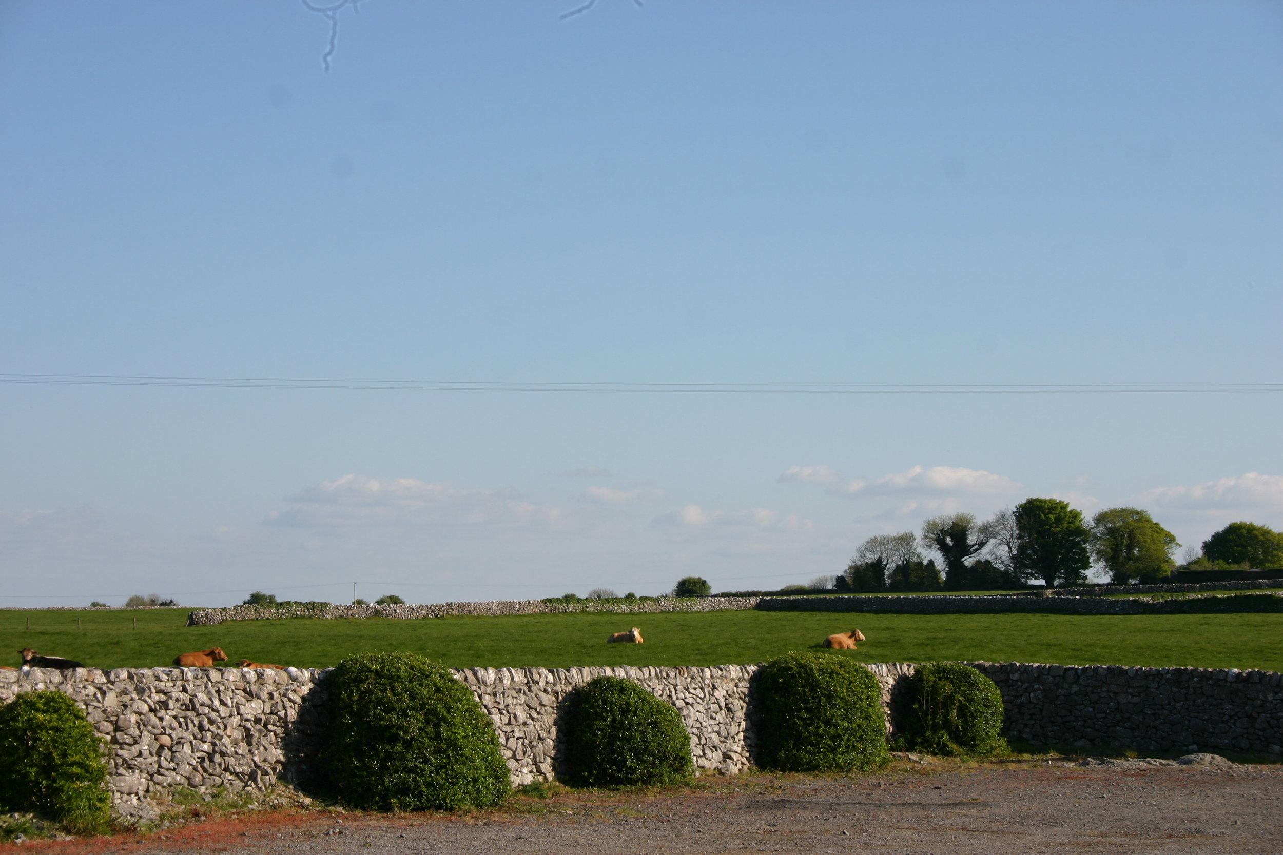 County Roscommon
