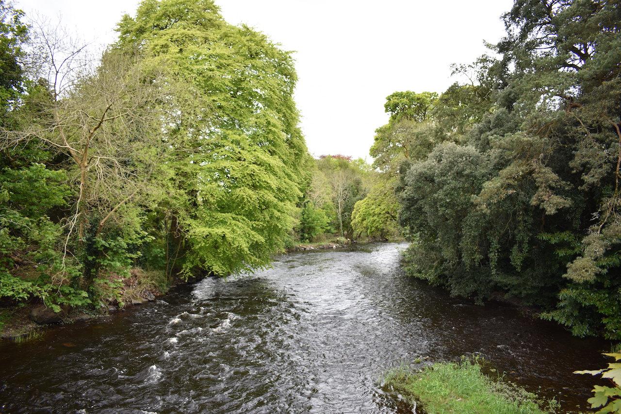 Co Roscommon