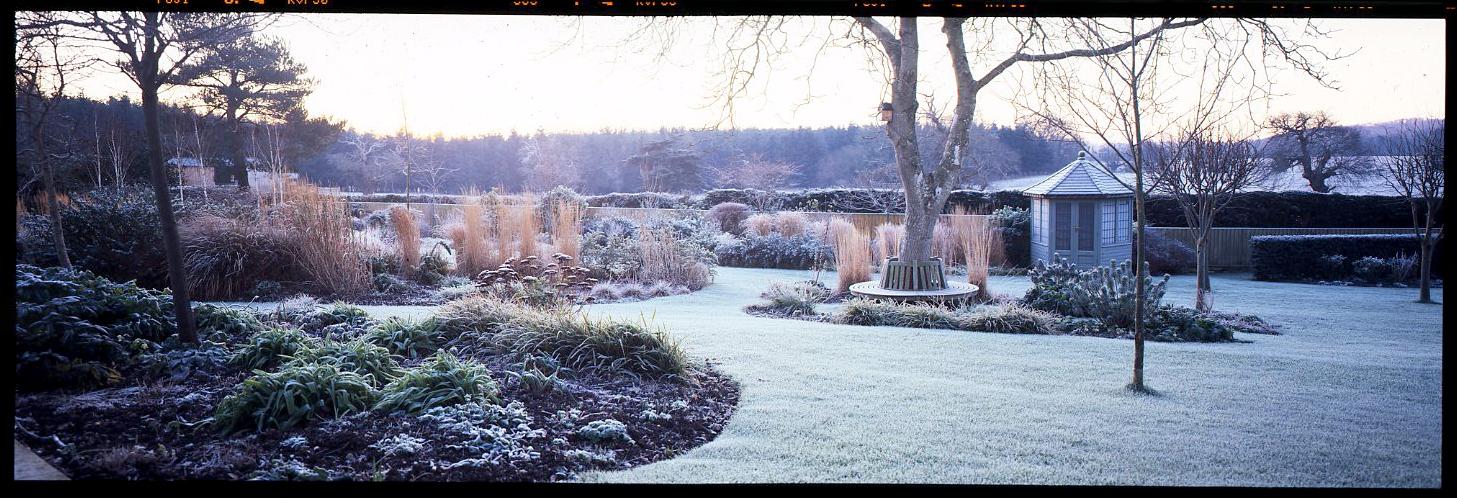 617 Velvia Katherine Crough Garden Designs - the best. Shot in Somerset - private garden, early morning.