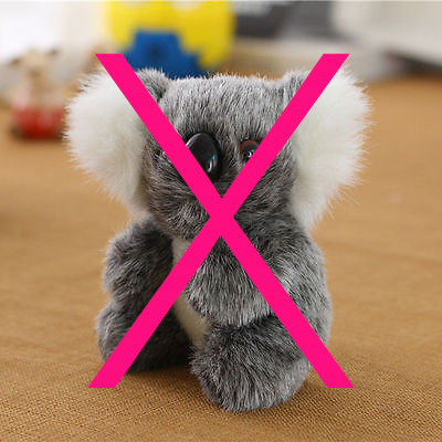 Stuffed-koala-bear-x.jpg