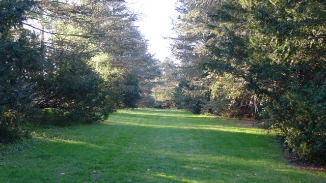 th_169 South Lawn.jpg