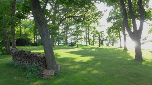 th_306 North Lawn.jpg