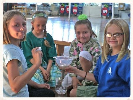 water workshop environmental schools cornwall.jpg
