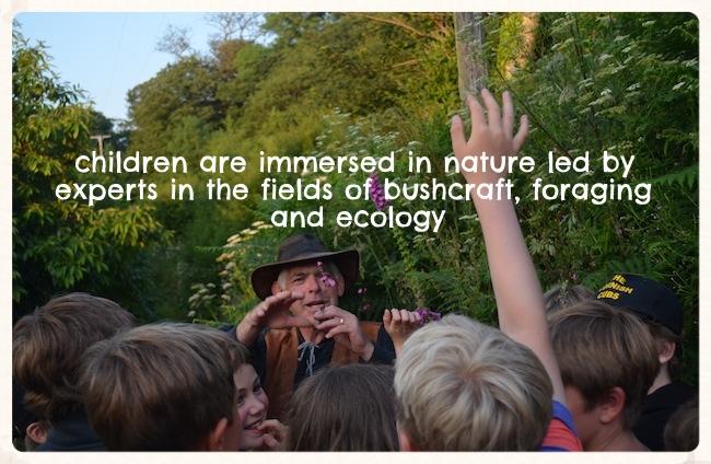 environmental summer camp schools.jpg