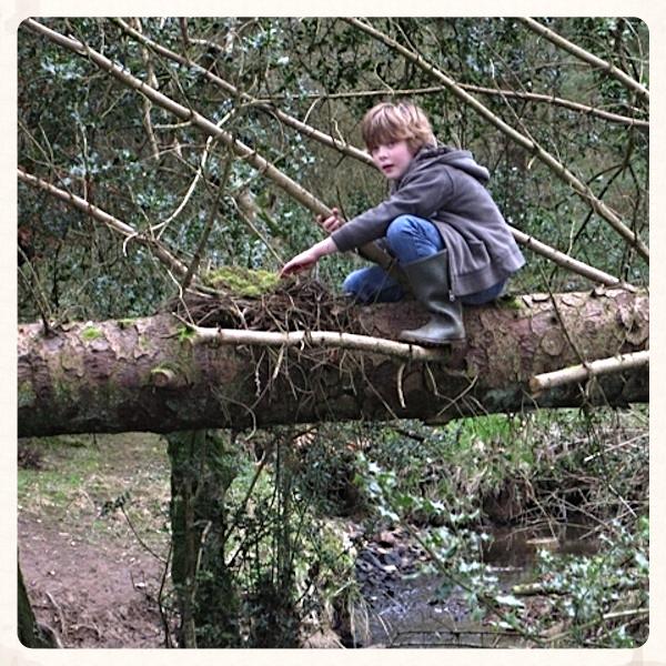 forest school camp kernow green education cornwall 2.jpg