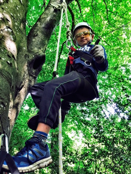 climbing up into the Beech tree for an amazing bird's eye view