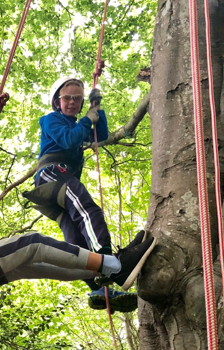 summer camp tree climbing.jpg