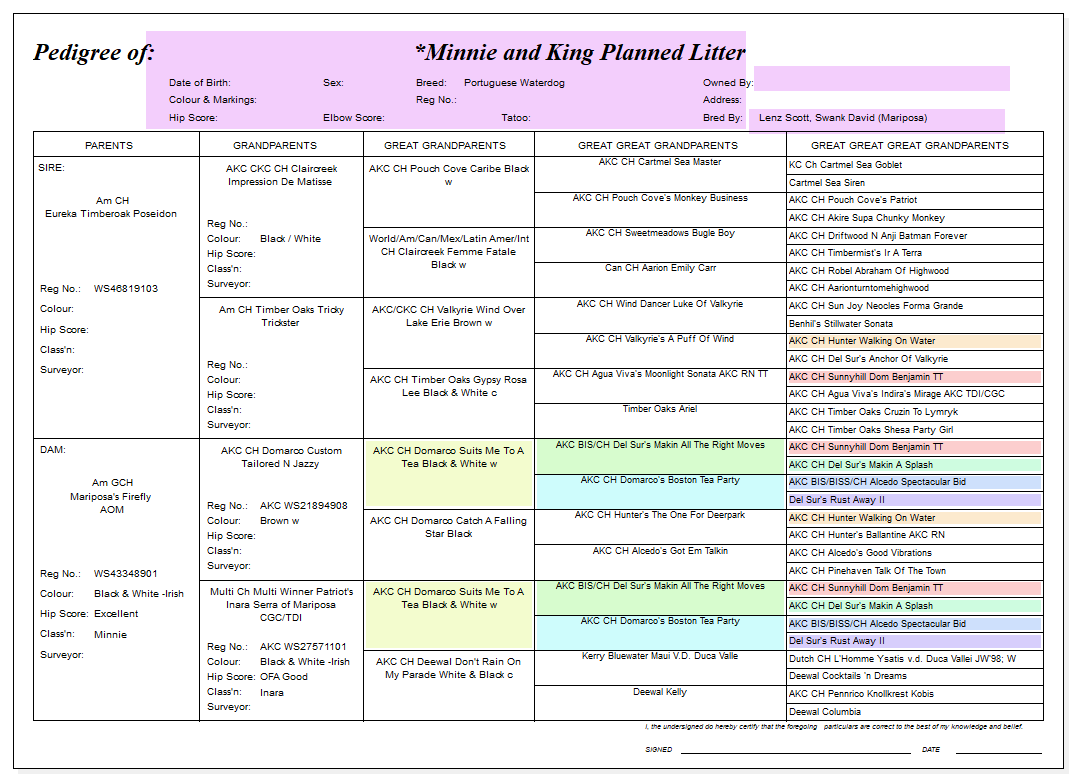 Planned Pedigree for King and Minnie Litter