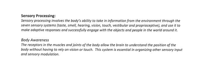 Sensory processing definition.jpg