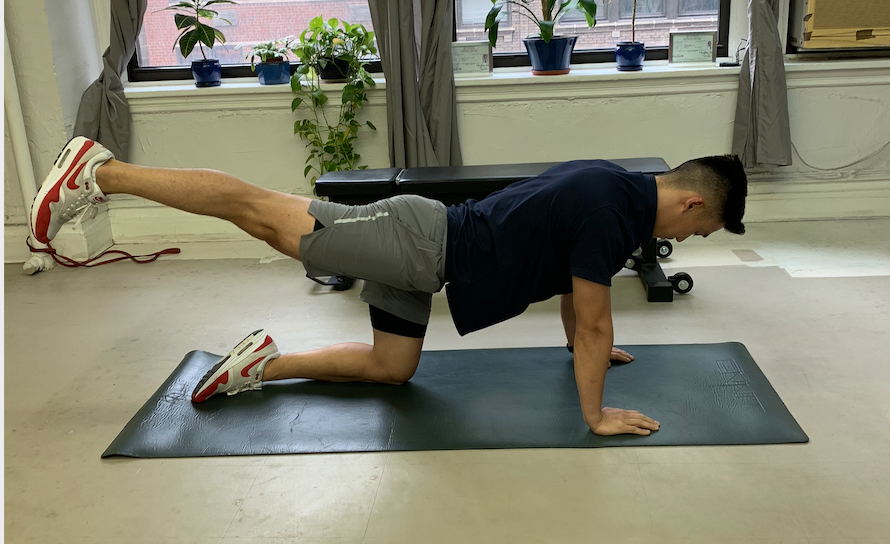 Quadruped Hip Extension Holds