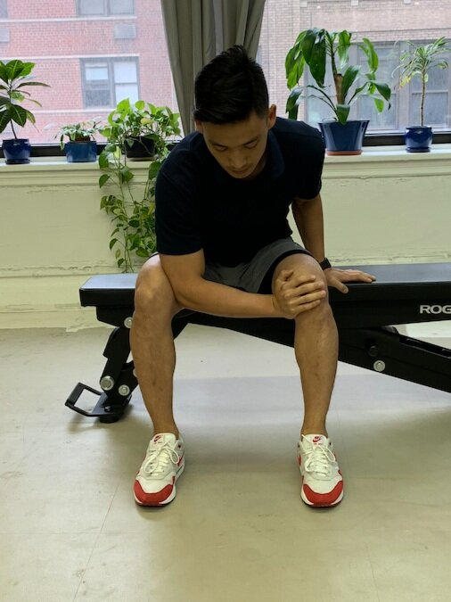 Seated Adductor Arm Squeeze