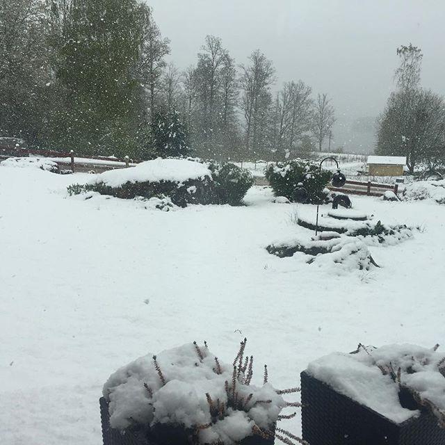 Japp man vet att man bor i norden när man tittar ut idag😲Så här mycket snö har det knappt kommit på hela vintern😉
