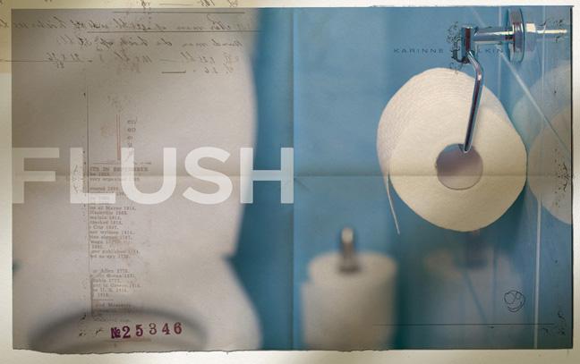 Flush1.jpg