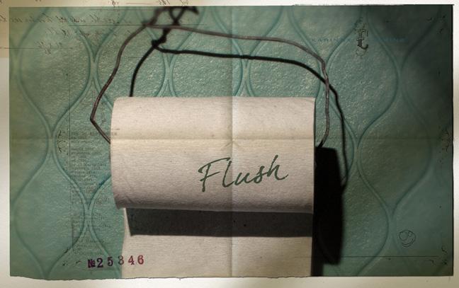 Flush3.jpg