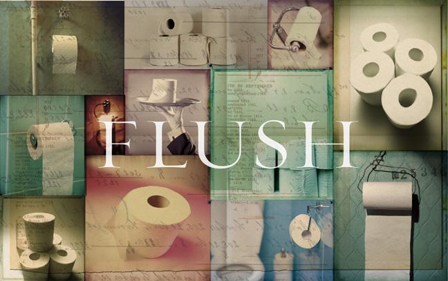 Flush10.jpg