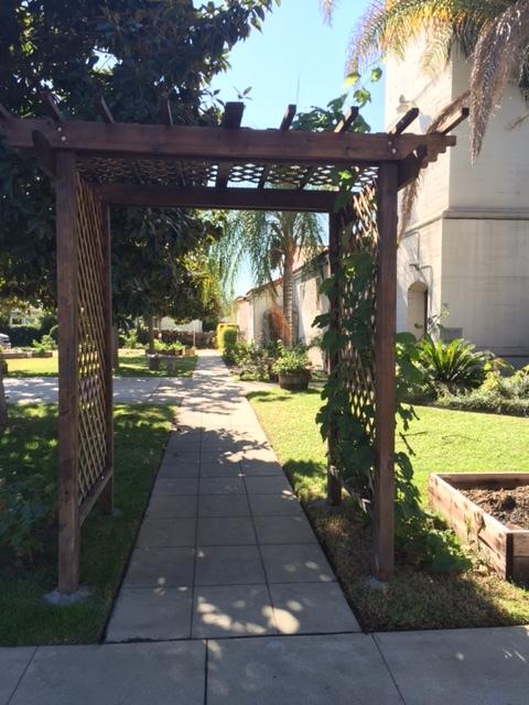 Garden Photo 20.JPG