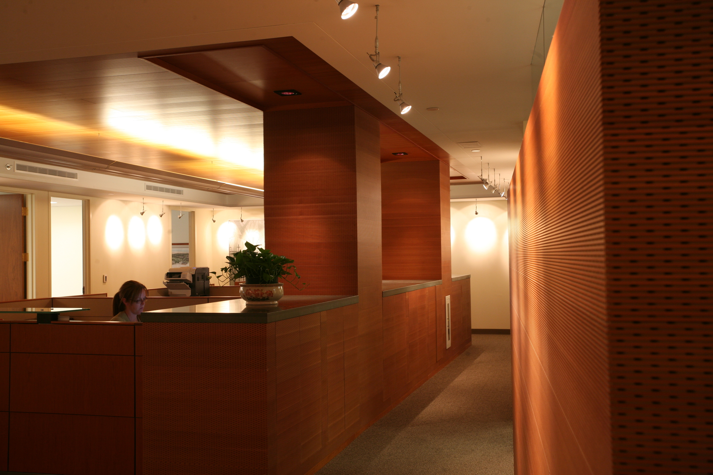 pho-int-acoustic cherry wall-72ppi-61x41.JPG