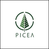 15Picea.png