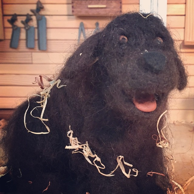 "Othello ""othie"" the Newfoundland covered in wood shavings."