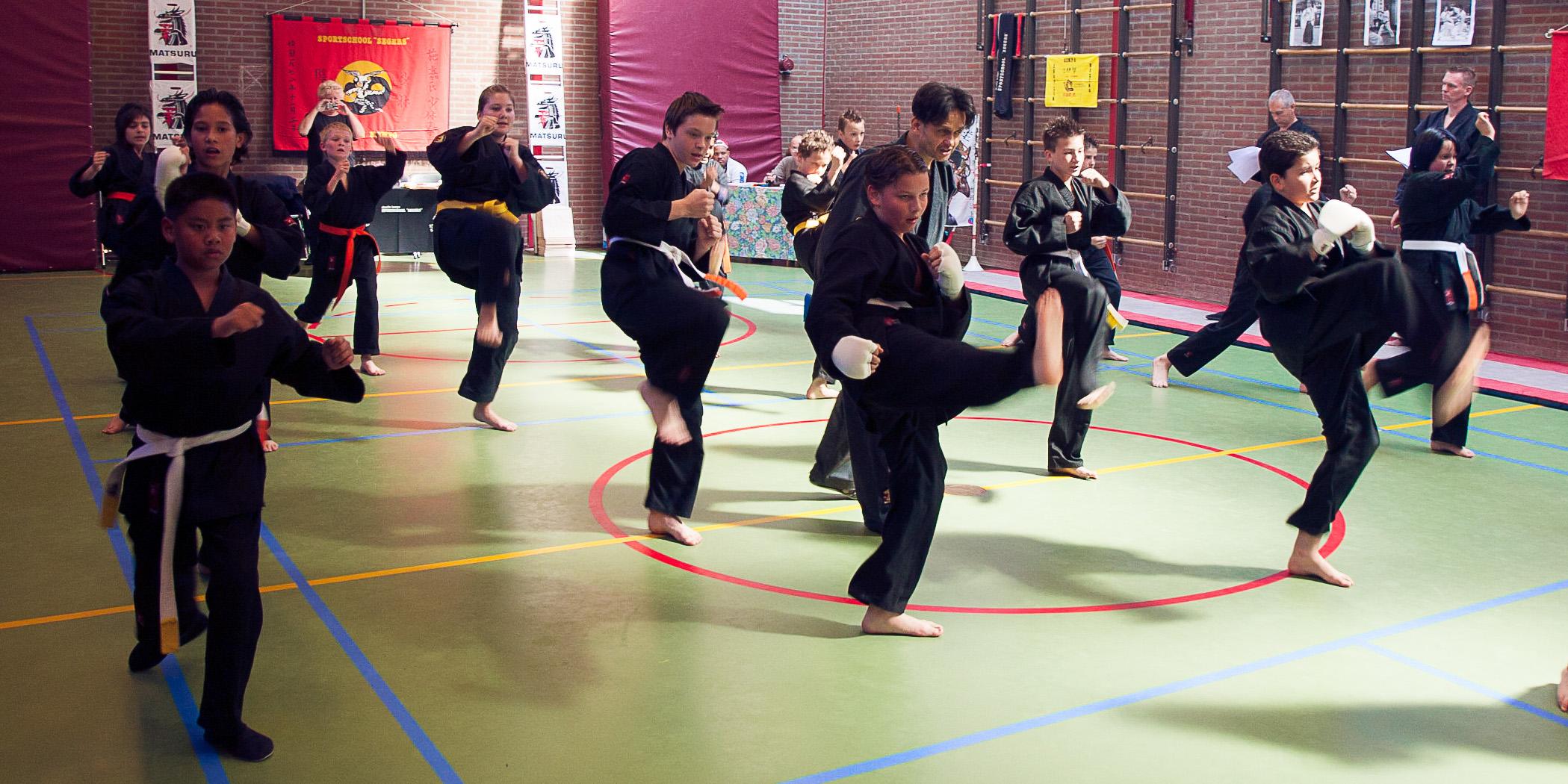 Shaolin Kempo Segers Slider-02.jpg