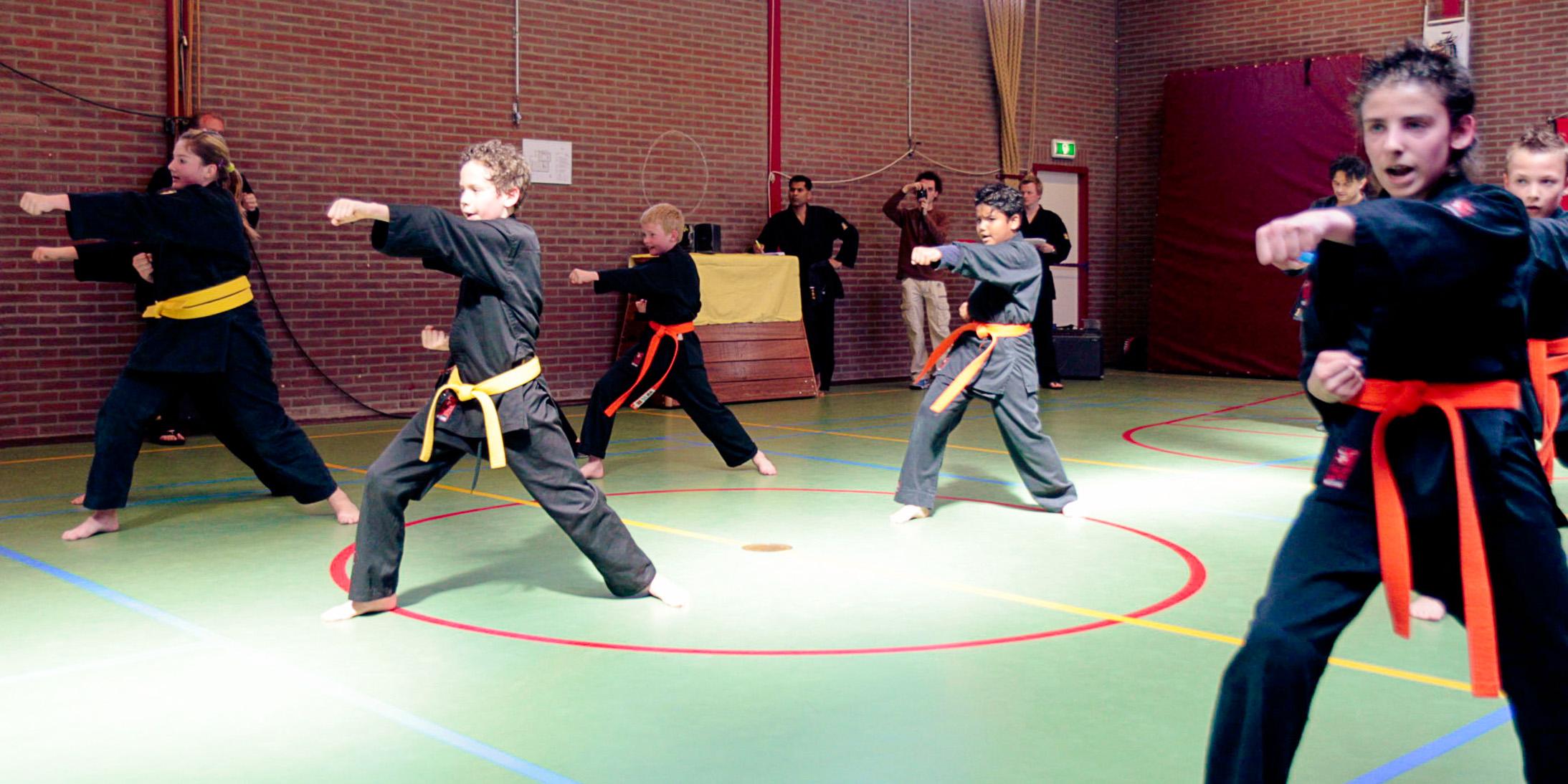 Shaolin Kempo Segers Slider-04.jpg
