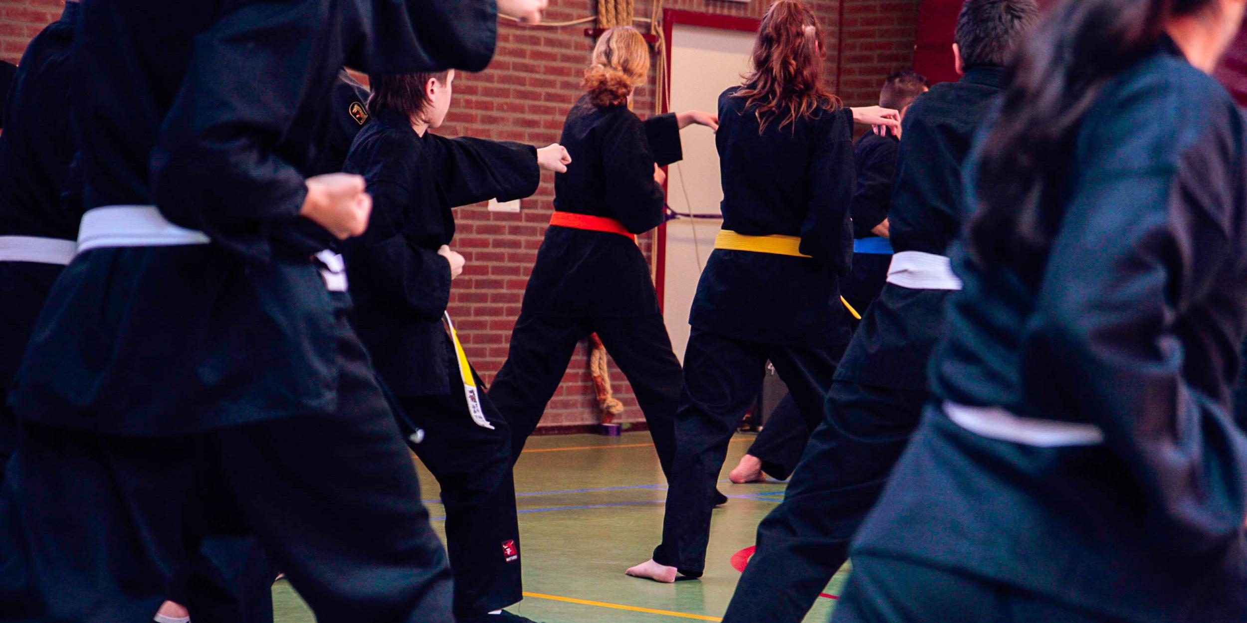 Shaolin Kempo Segers Slider-05.jpg