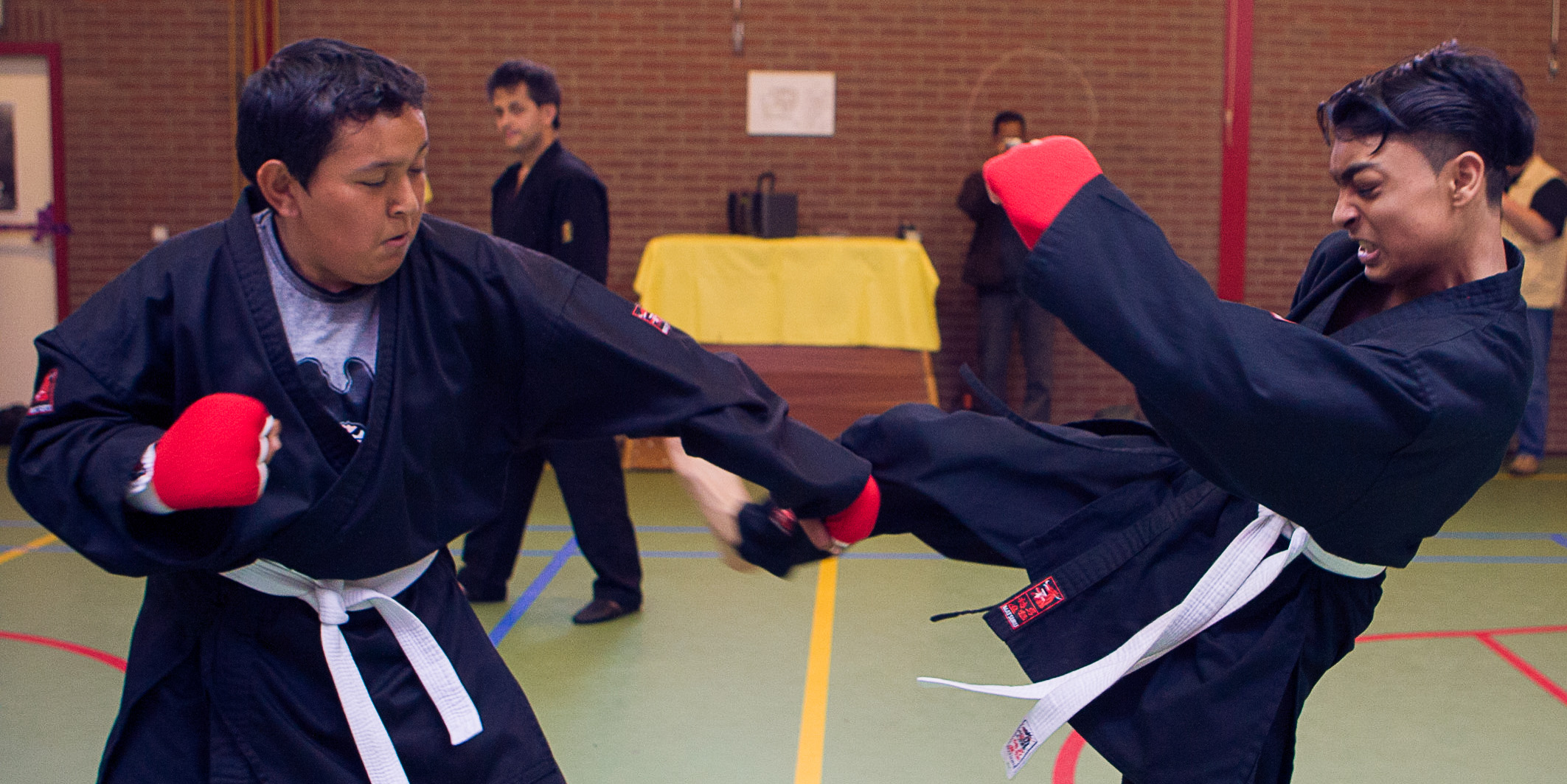 Shaolin Kempo Segers Slider-09.jpg