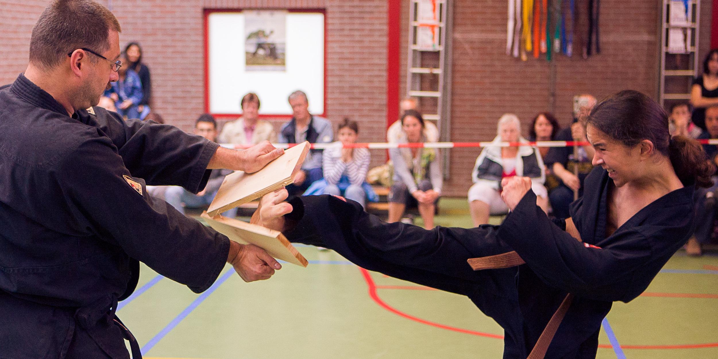 Shaolin Kempo Segers Slider-18.jpg