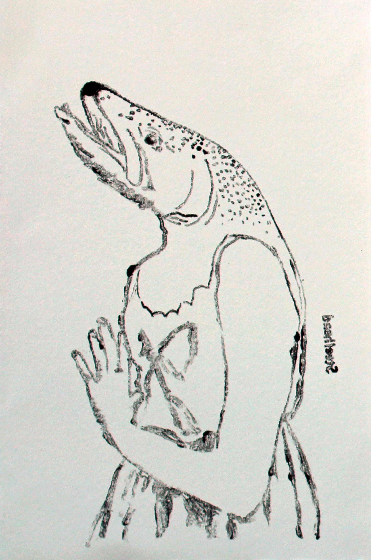 Steelhead Trout (Study)