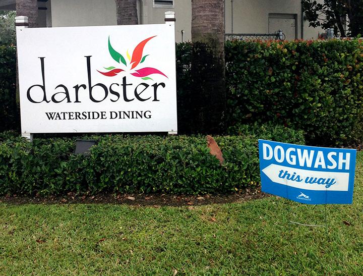 DARBSTER + DOG WASH