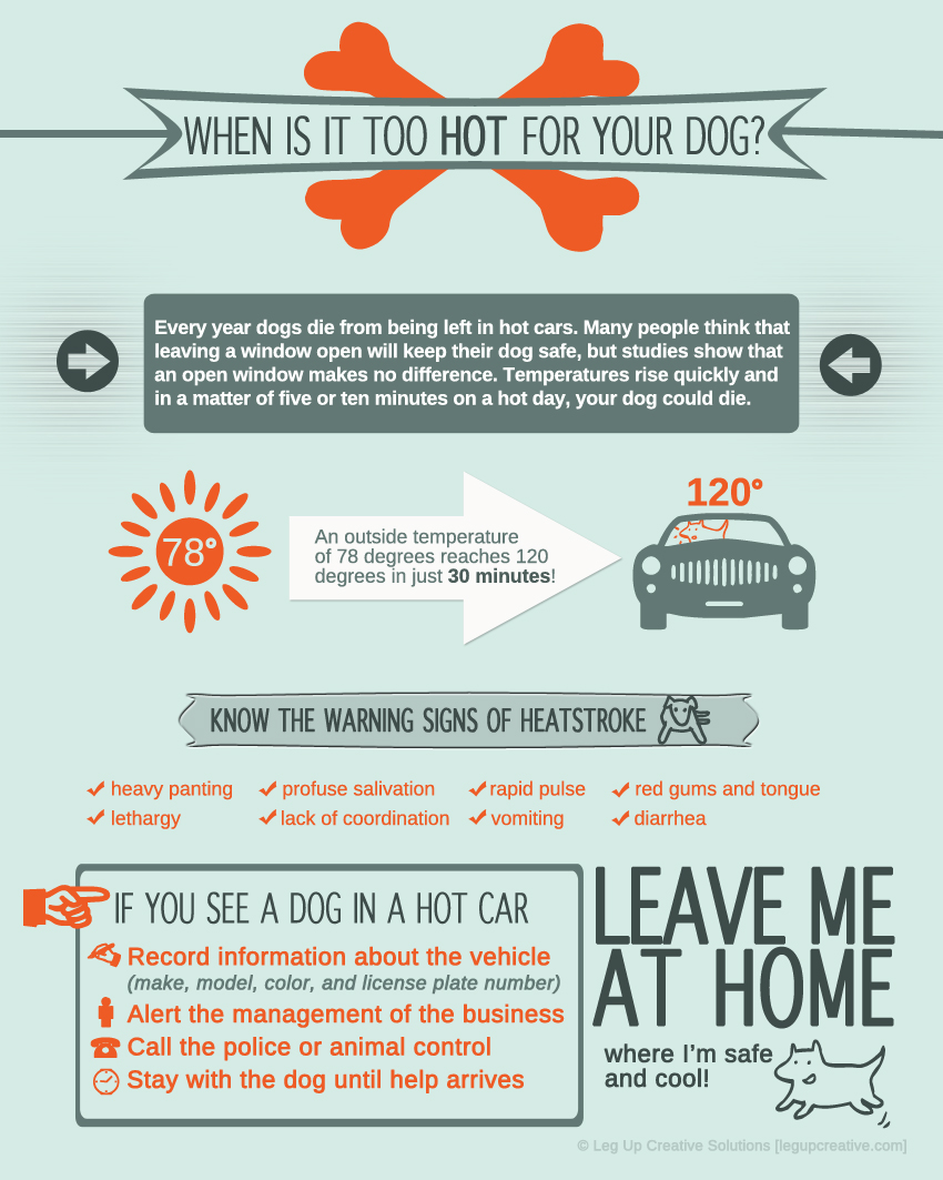 hotcar_infographic_web1.jpg