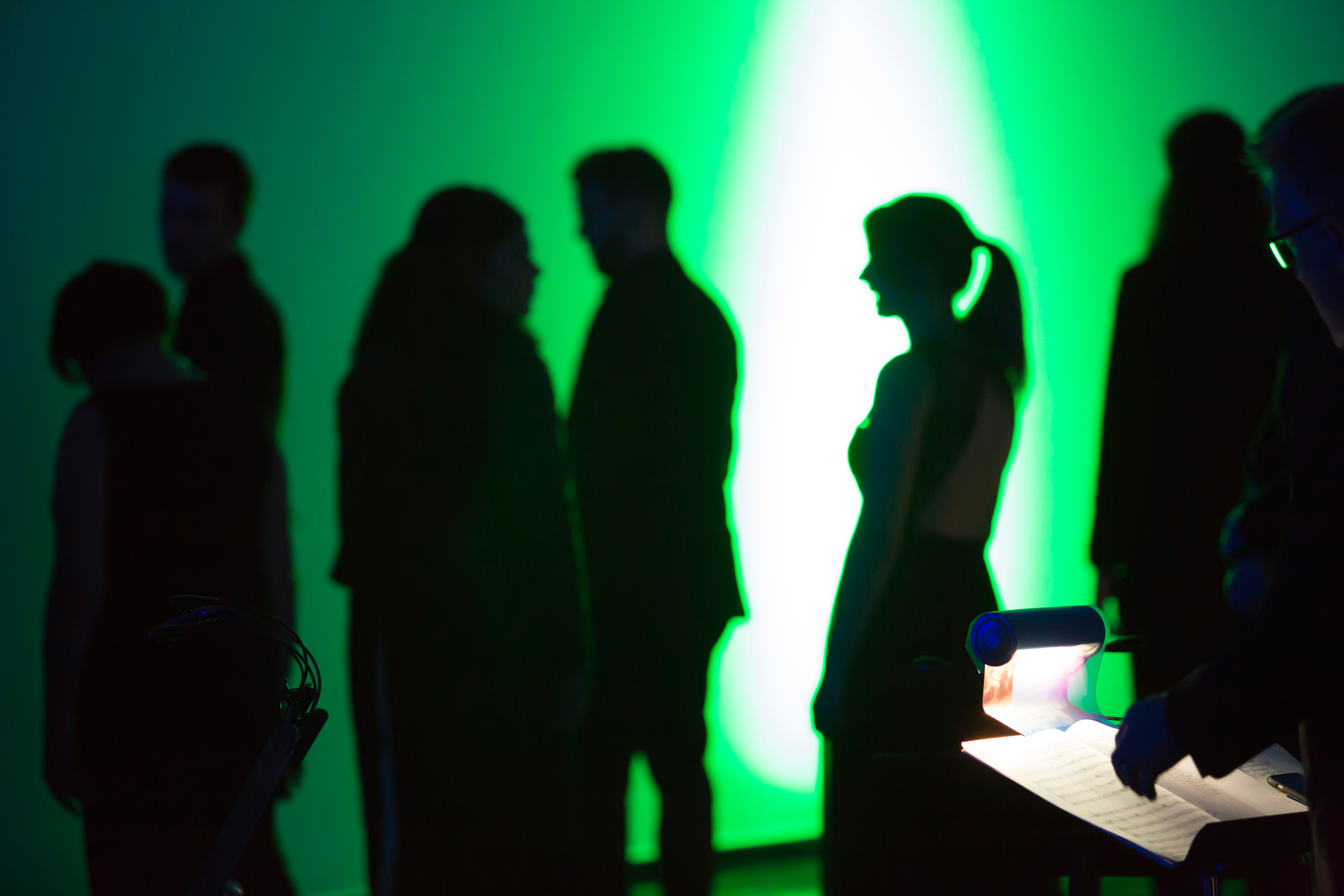 Northern Lights, at the Australian Centre for Contemporary Art