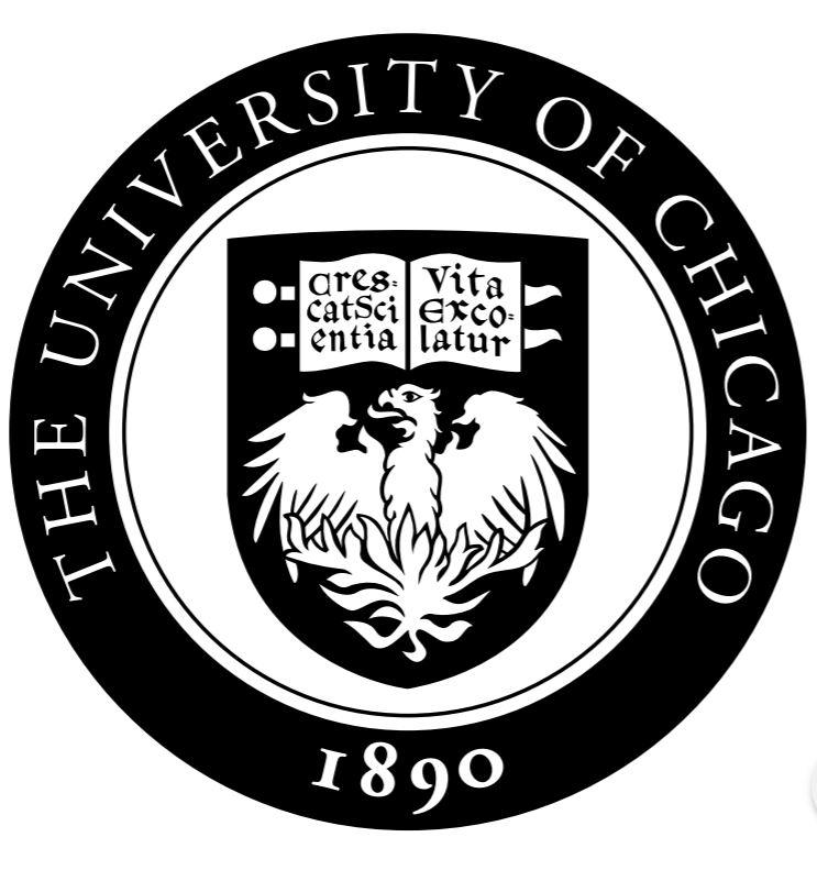 chicago seal updated.JPG