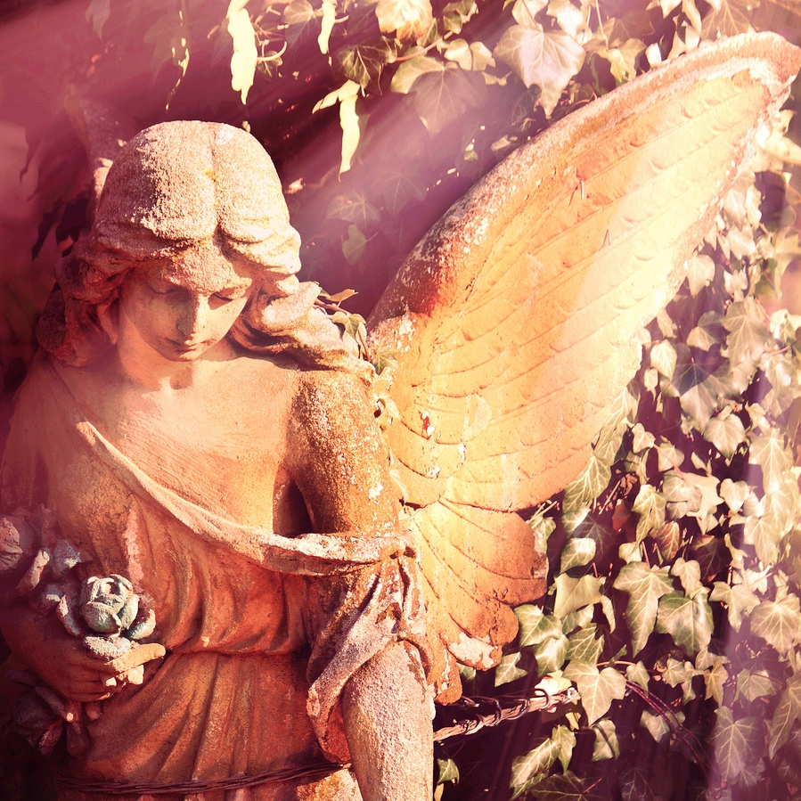 Need an Angel? - Got a problem? Let's get some wings on it! The angels have a divine message and perspective, just for you.