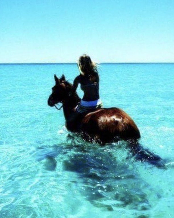 💎🐴💦🦋. . . . . #wanderlust #wanderlustwednesday #travel #gypsy #horseride #tropics #endlesssummer #love