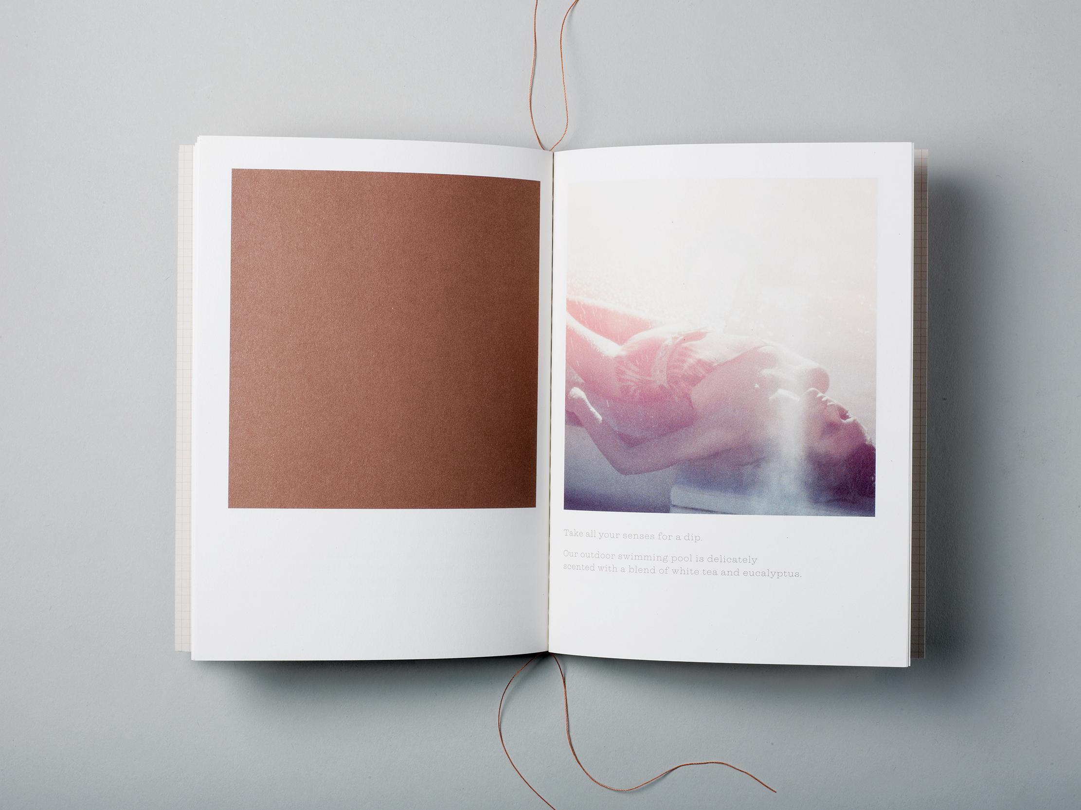 Darling-brochure-interior.jpg