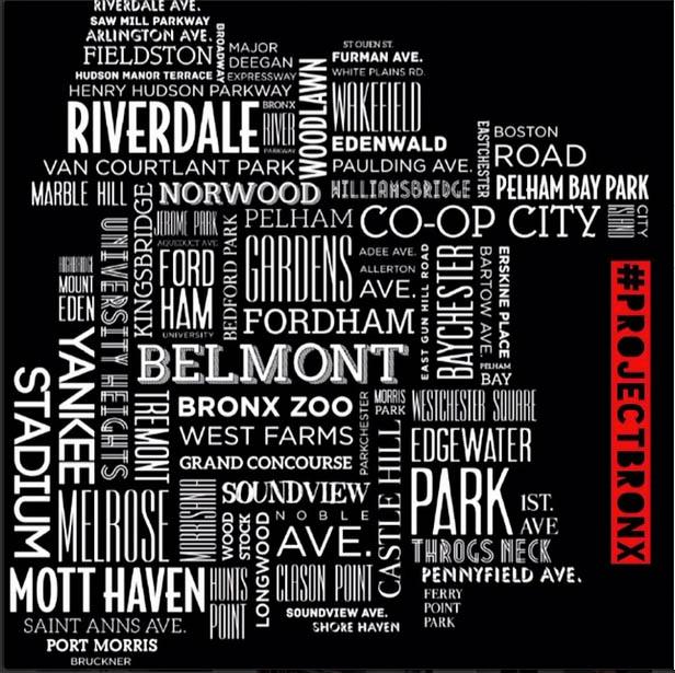 Project Bronx Map.jpg