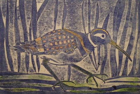 painted-snipe-in-the-kooragang-marshlands_Collagraph_Jennifer Castaldi.jpg