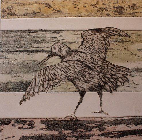 The Great Knot_Jeanne Harrison_etching and drypoint.jpg