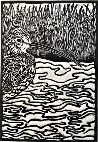 Eastern Curlew_Linoprint_Wendy Livesley.JPG