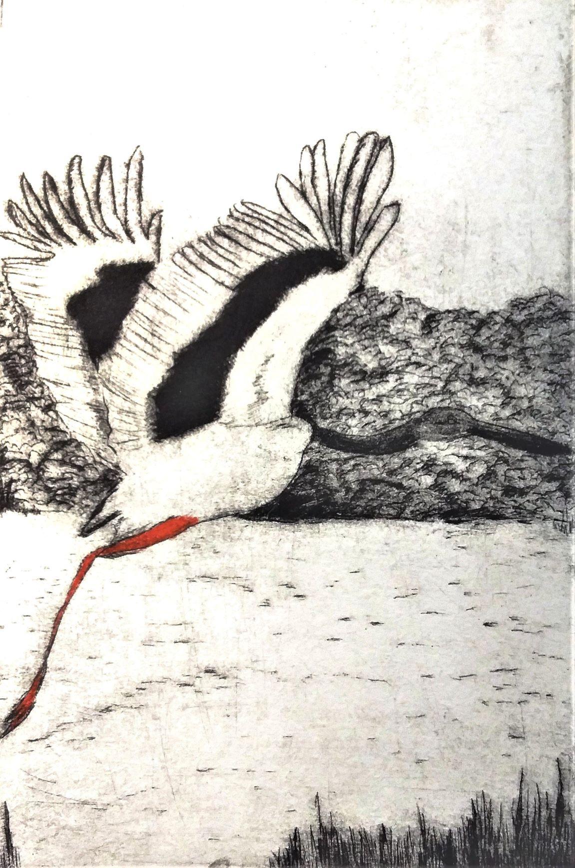 Go (Black-neck stork)_Dryponint_Michelle Hallinan.jpg