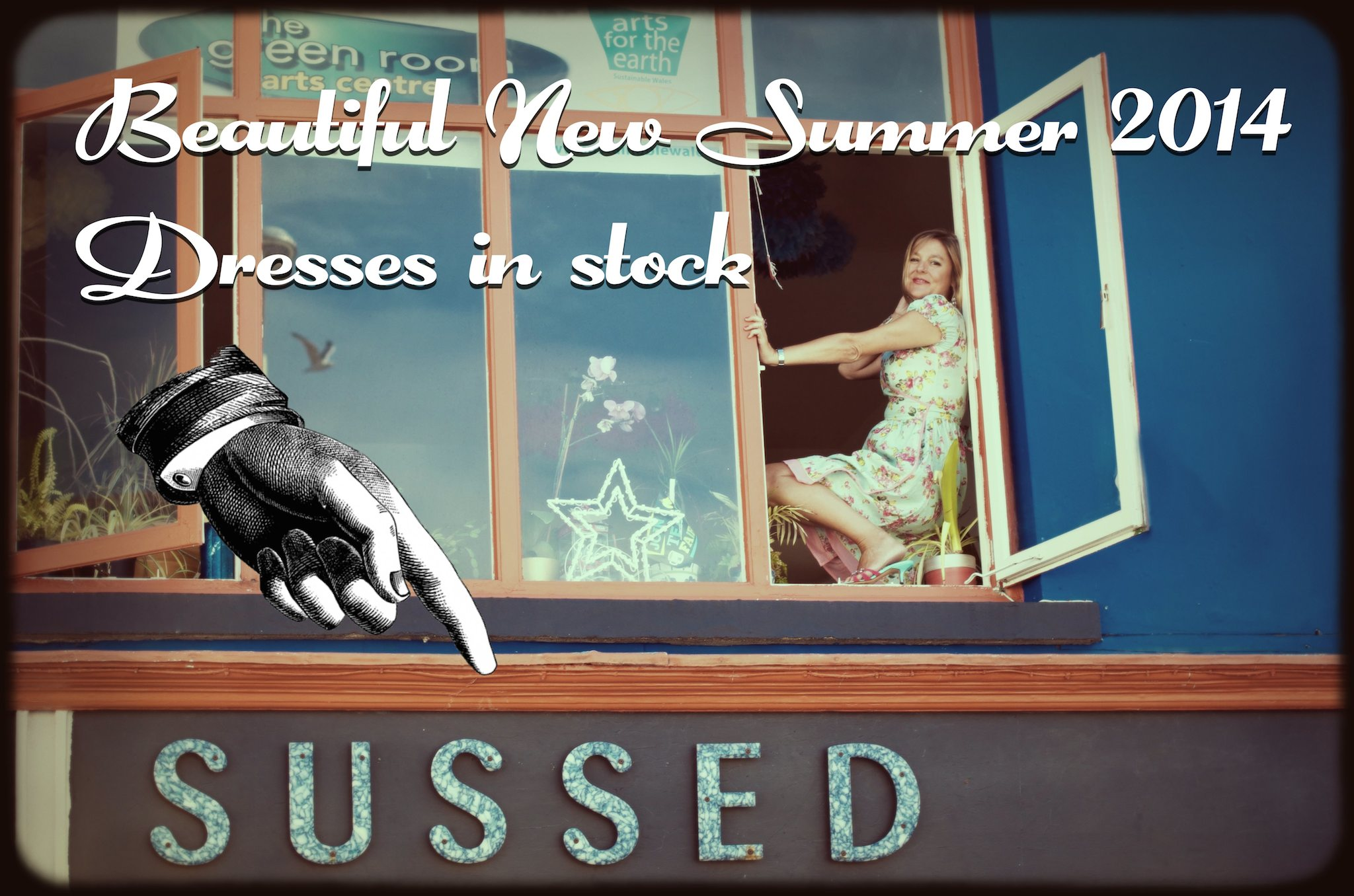 Sussed Window Summer 2014 dresses Text web.jpg