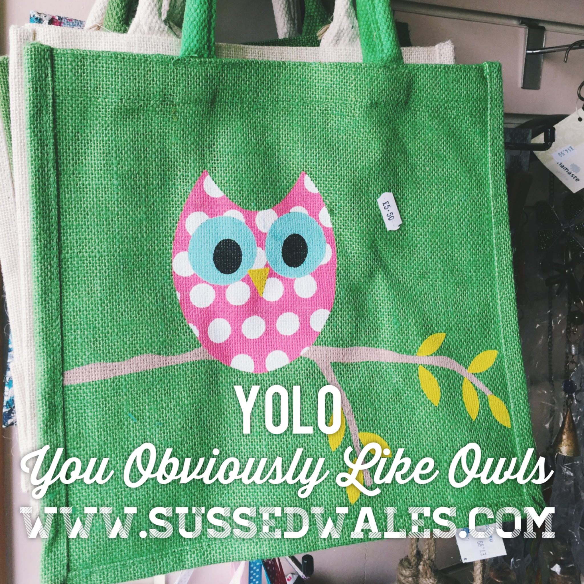 owl bag yolo.jpg