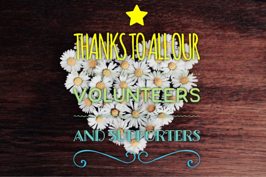 thanks to volunteers.jpg