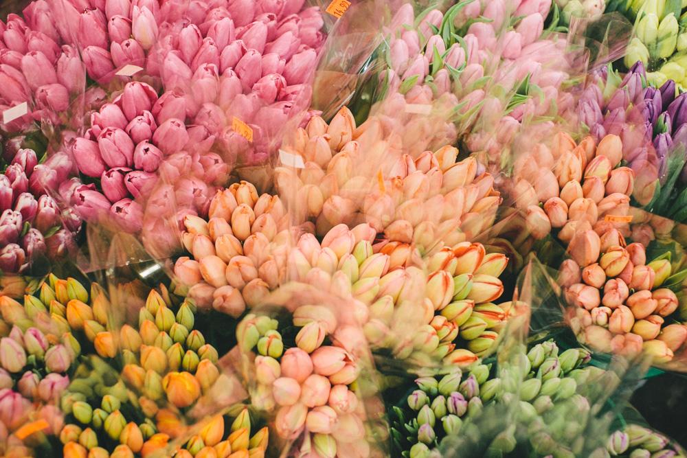 DanijelaWeddings-flowerhunt01.jpg