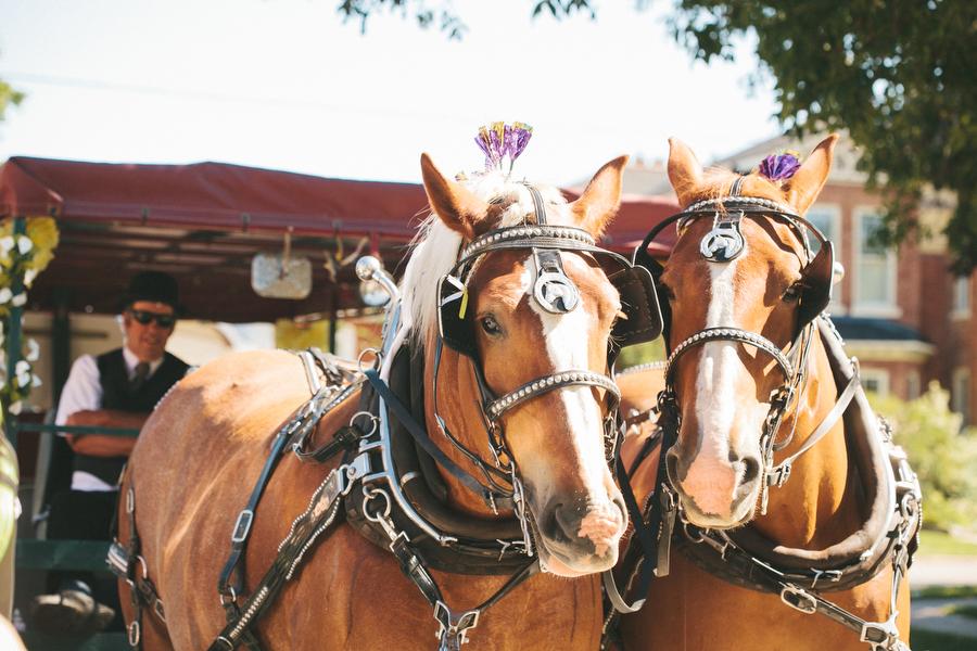 cottage-wedding-photos-CranberryGolfResort-Muskoka-musicians027.JPG