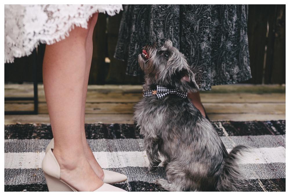 intimate-wedding-photos-Toronto-Louvrier-HighPark-027.JPG