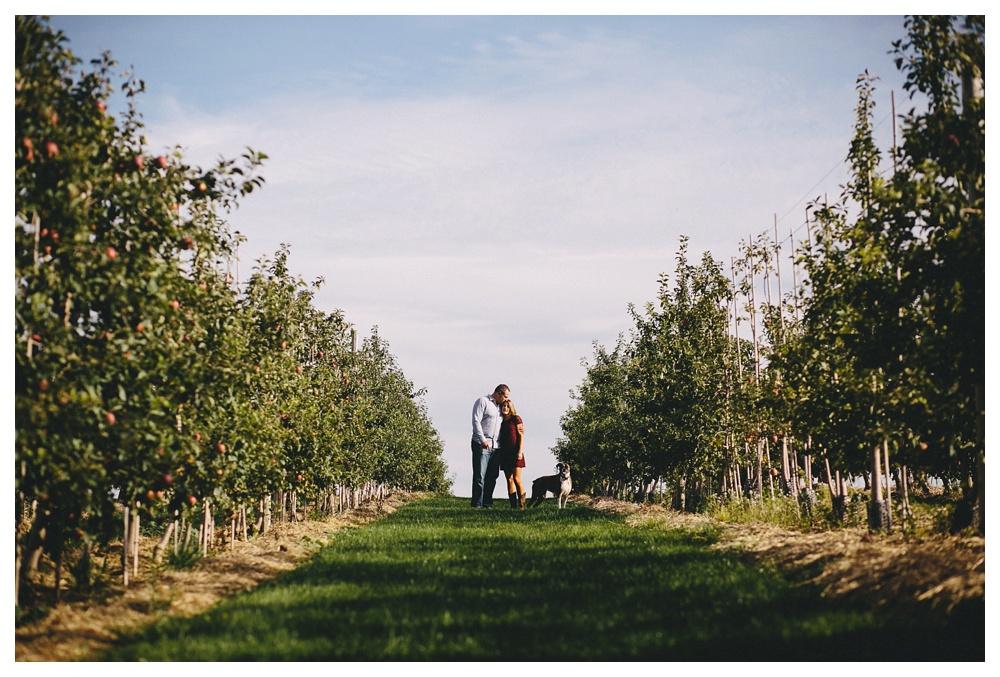 33-DanijelaWeddings-Toronto-engagement-appleorchard-apples-dog-chudleighs.JPG