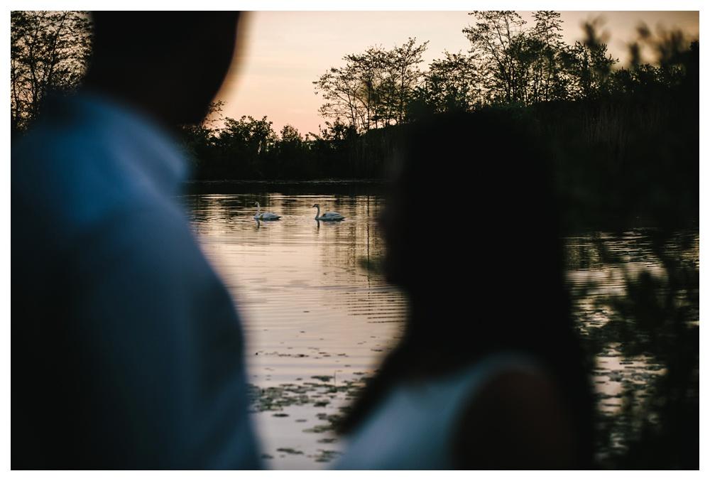 73-DanijelaWeddings-engagement-thebluffs-swans-sunset.JPG